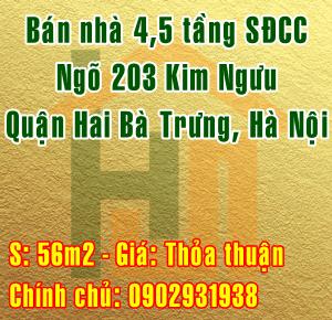 Chính chủ bán nhà Quận Hai Bà Trưng, ngõ 203 Kim Ngưu
