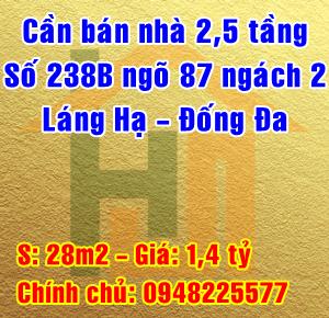 Bán nhà số 238B ngõ 87 ngách 2 Láng Hạ, Quận Đống Đa, Hà Nội