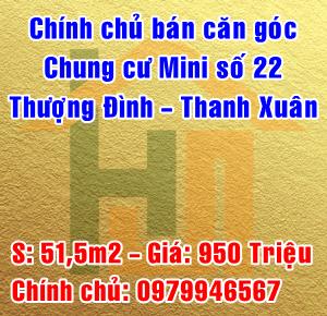 Bán căn góc chung cư Mini số 22 Thượng Đình, Quận Thanh Xuân, Hà Nội