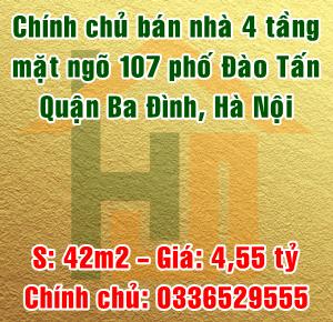 Chính chủ bán nhà mặt ngõ 107 phố Đào Tấn, quận Ba Đình