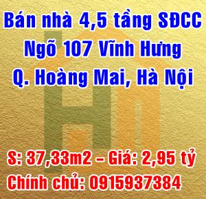 Chính chủ bán nhà ngách 5 ngõ 107 Vĩnh Hưng, phường Vĩnh Hưng, quận Hoàng Mai